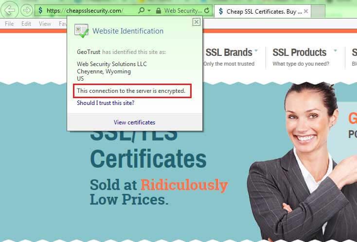 view ev ssl certificate information internet explorer