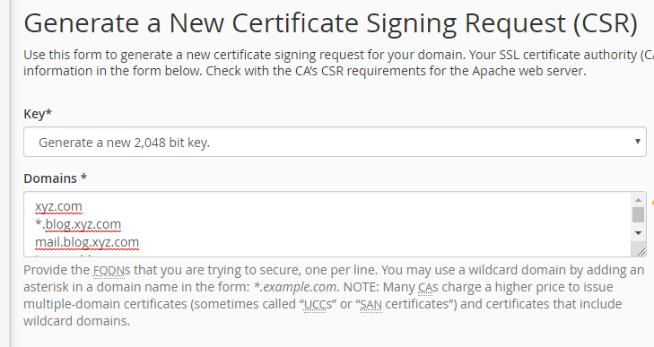 CSR for subdomain wildcard ssl