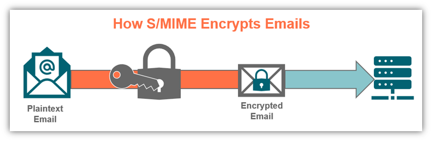 What is S/MIME graphic: An illustration of how the S/MIME email encryption process works