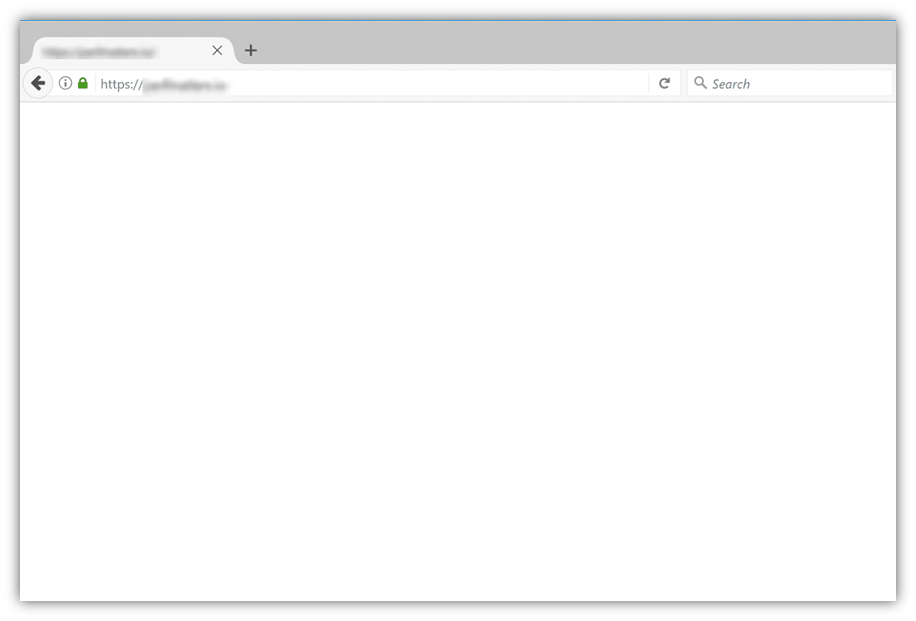 A screenshot of the white screen of death that displays no error message. Image source: Kinsta.com