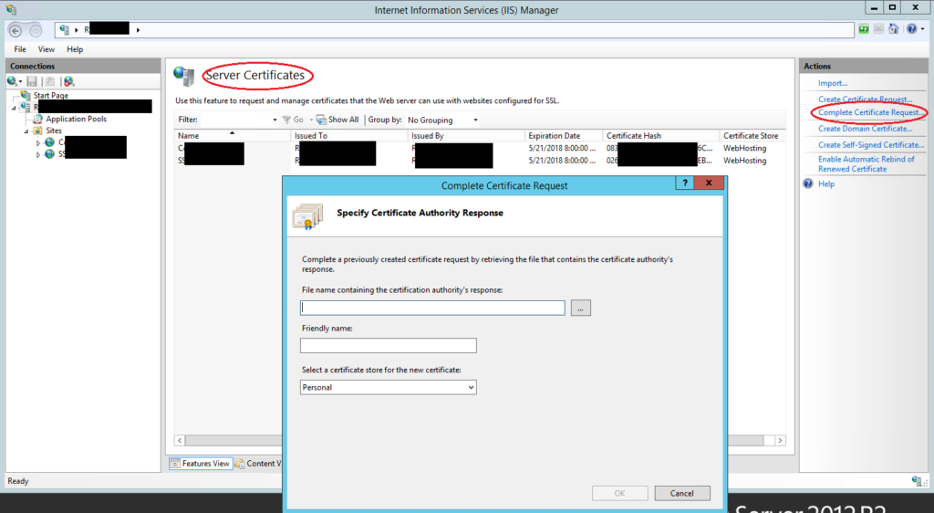 Graphic: Specify the server when installing a wildcard SSL certificate on IIS
