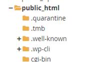 public html option