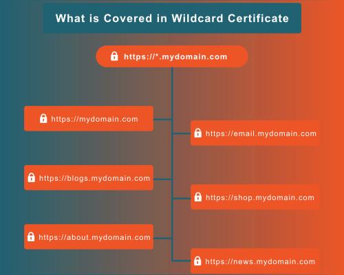 wildcard ssl covers